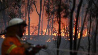 صورة أكثر من 100 حريق في أستراليا بسبب موجة من الحر الشديد