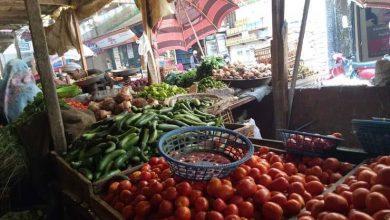 صورة زيادة تصل إلى جنيه.. أسعار الخضروات ترتفع في سوق الجملة خلال أسبوع