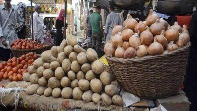 صورة أسعار الخضر والفاكهة في سوق الجملة بالعبور اليوم الثلاثاء