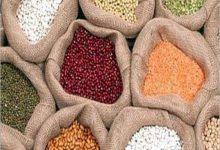 صورة الحاصلات الزراعية: 5% زيادة في أسعار البقوليات بسبب ارتفاع أسعار الشحن
