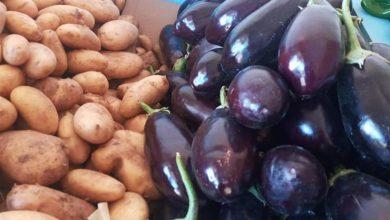 صورة ارتفاع أسعار الخضروات في سوق العبور خلال الأسبوع