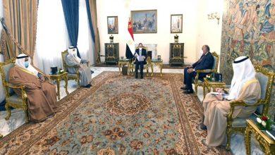 صورة السيسي يؤكد موقف مصر الثابت تجاه دعم التضامن العربي