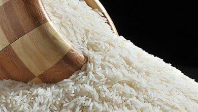 صورة دراسة علمية: الأرز فيه سم قاتل