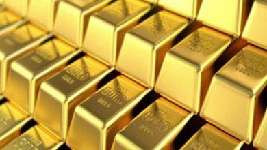 صورة بعد هبوطه 23%.. كيف تطور إنتاج منجم السكري من الذهب في عام ونصف العام؟ (جراف)