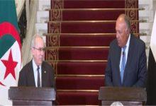 صورة وزير الخارجية: الرئيس السيسى تلقى رسالة مودة وإخاء من نظيره الجزائرى