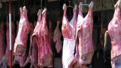 صورة ارتفاع أسعار اللحوم 20 جنيهًا للكيلو في الأسواق