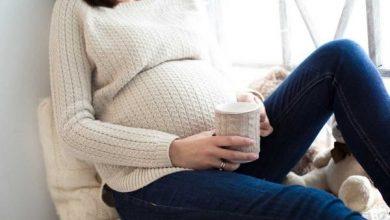 صورة هل المرامية تسقط الجنين في الشهور الأولى؟