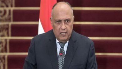 صورة «شكري» يؤكد تقدير مصر لجهود أمين عام الأمم المتحدة في حفظ السلم والأمن