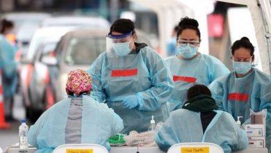 صورة تقرير استخباري يكشف: سوق الحيوانات الحية في ووهان غير مسؤول عن كورونا..وهؤلاء هم المتورطون .