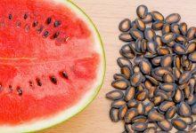 صورة منها محاربة السرطان.. فوائد مذهلة لحبوب البطيخ