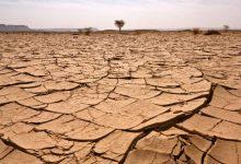صورة حكومة إسرائيل تصادق على خطة لتشجيع الابتكار لمكافحة أزمة المناخ