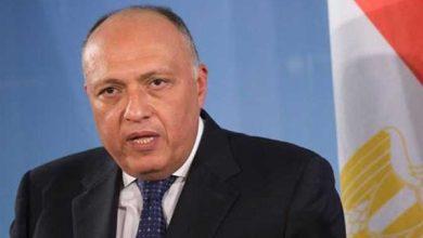 صورة وزير الخارجية يؤكد ضرورة إجراء الانتخابات الليبية في 24 ديسمبر المقبل